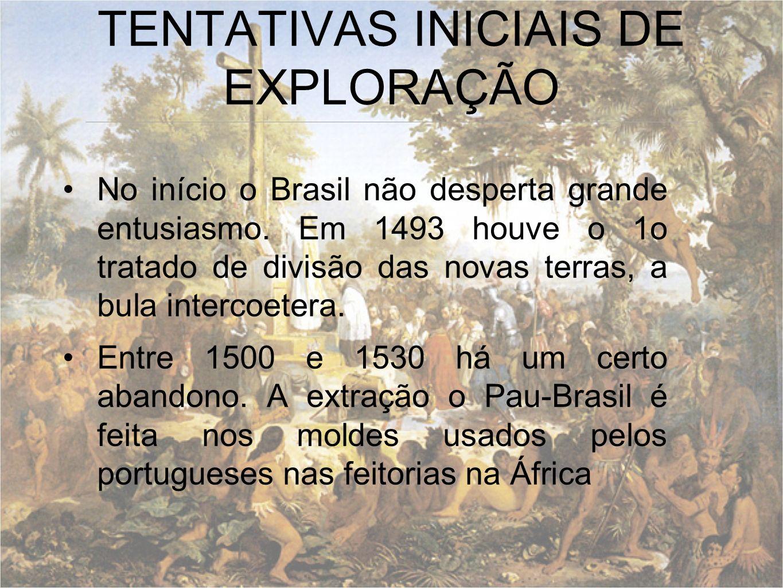 TENTATIVAS INICIAIS DE EXPLORAÇÃO No início o Brasil não desperta grande entusiasmo. Em 1493 houve o 1o tratado de divisão das novas terras, a bula in