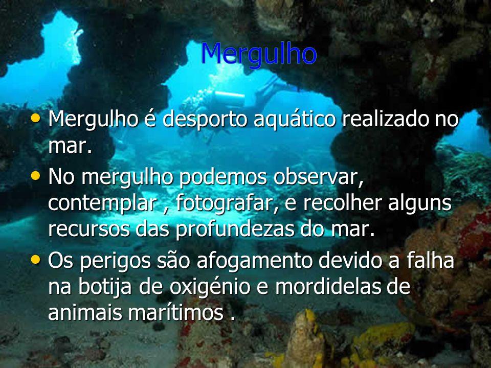 Mergulho é desporto aquático realizado no mar. Mergulho é desporto aquático realizado no mar. No mergulho podemos observar, contemplar, fotografar, e