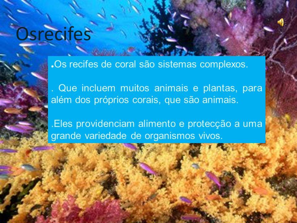Osrecifes.Os recifes de coral são sistemas complexos..