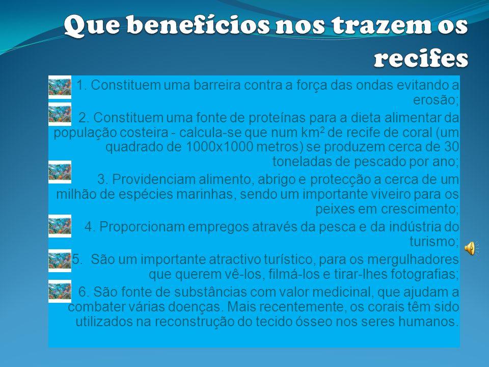 http://www.fnp.org.mz/ht/coraims.html http:// pt.wikipedia.org/wiki/Mergulho-