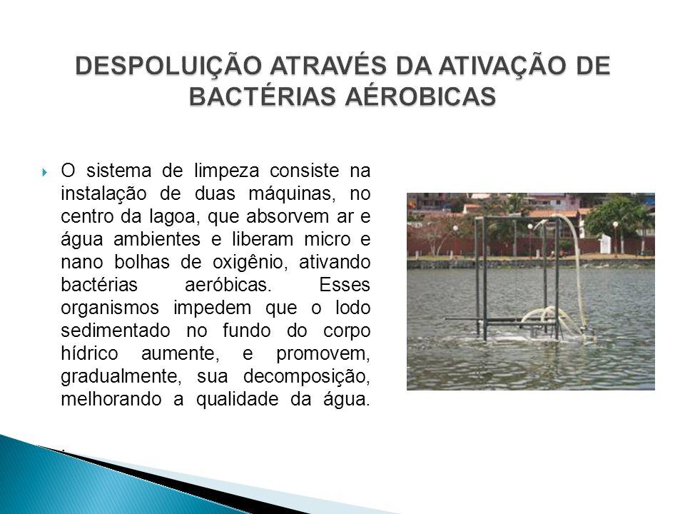 O sistema de limpeza consiste na instalação de duas máquinas, no centro da lagoa, que absorvem ar e água ambientes e liberam micro e nano bolhas de ox