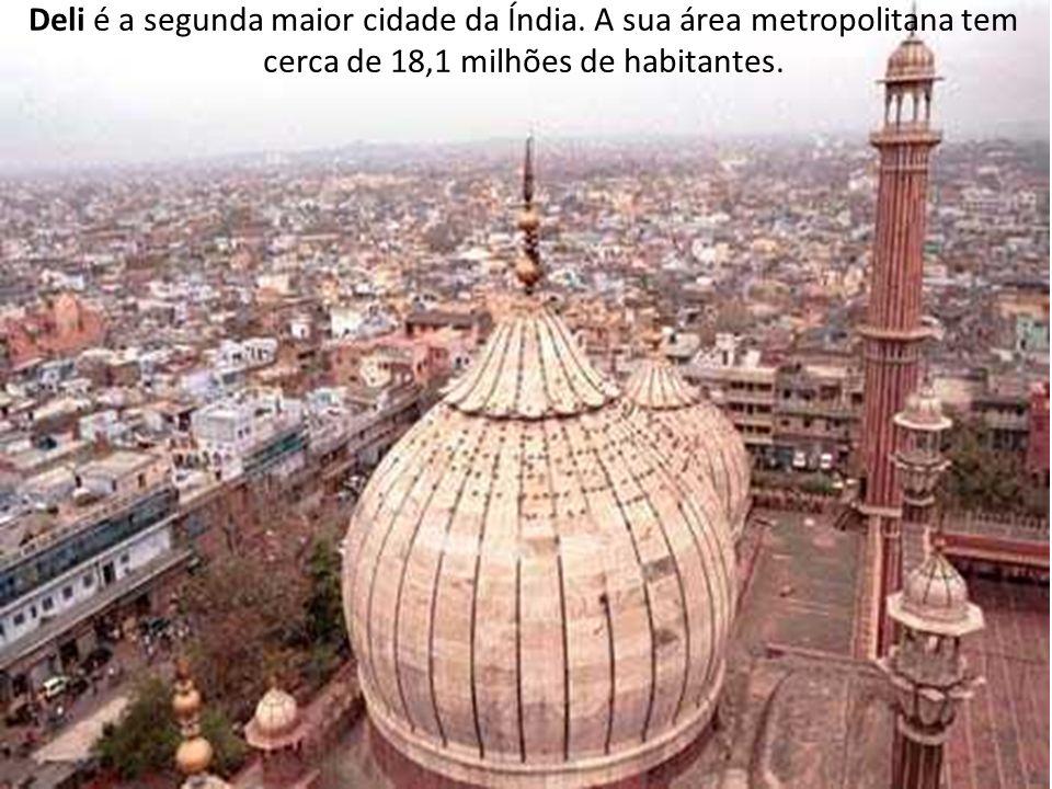 Deli é a segunda maior cidade da Índia. A sua área metropolitana tem cerca de 18,1 milhões de habitantes.