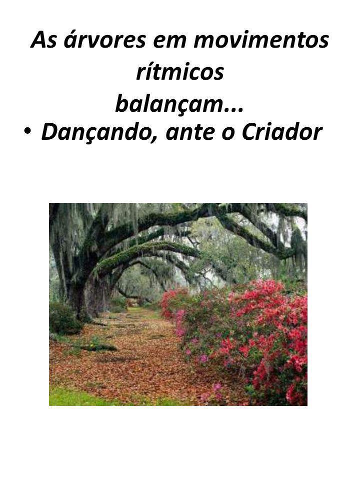 As árvores em movimentos rítmicos balançam... Dançando, ante o Criador