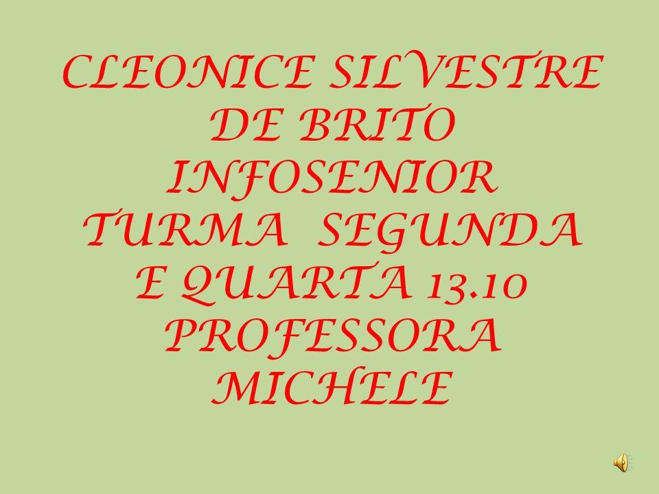 CLEONICE SILVESTRE DE BRITO INFOSENIOR TURMA SEGUNDA E QUARTA 13.10 PROFESSORA MICHELE