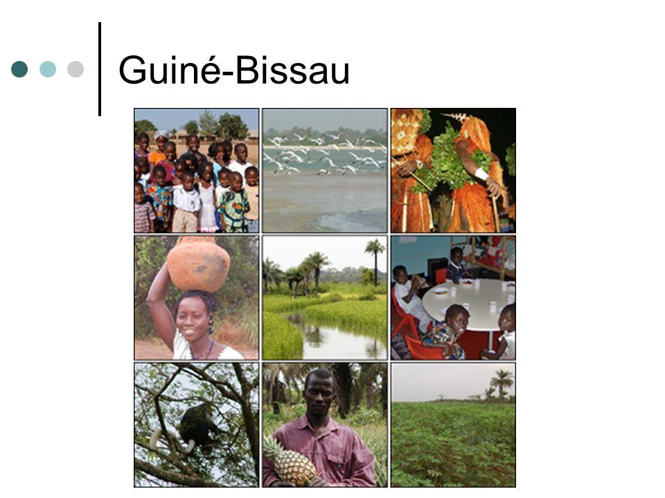 Guiné Bissau Foi colônia portuguesa; Foi centro fornecedor de escravos até o século XIX; Por ano, cerca de 3000 escravos eram levados, principalmente, ao Brasil; Conquistou a independência em 1973; Sofreu diversos golpes de estado.