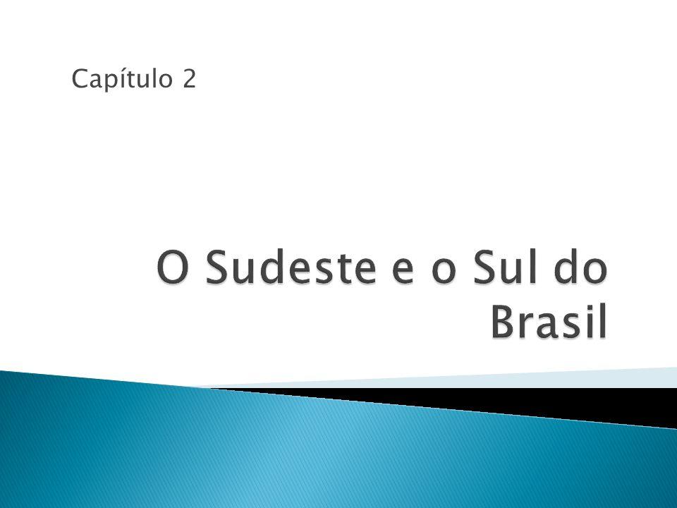 Produz 75% da renda brasileira.Possui o maior parque industrial da América Latina.