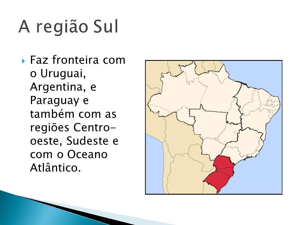 Faz fronteira com o Uruguai, Argentina, e Paraguay e também com as regiões Centro- oeste, Sudeste e com o Oceano Atlântico.