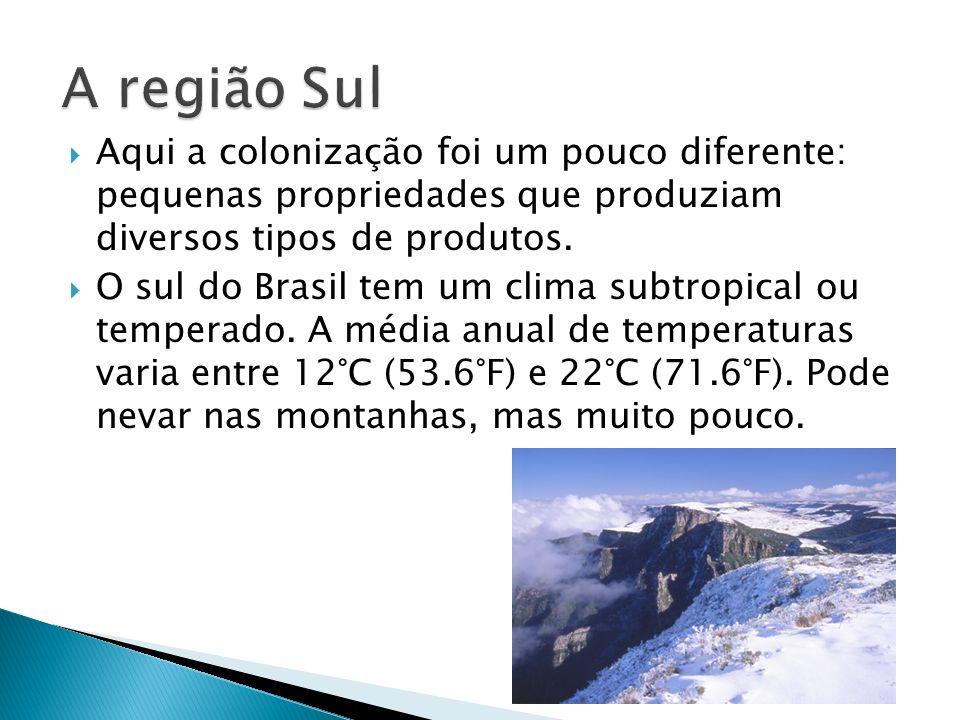Aqui a colonização foi um pouco diferente: pequenas propriedades que produziam diversos tipos de produtos. O sul do Brasil tem um clima subtropical ou