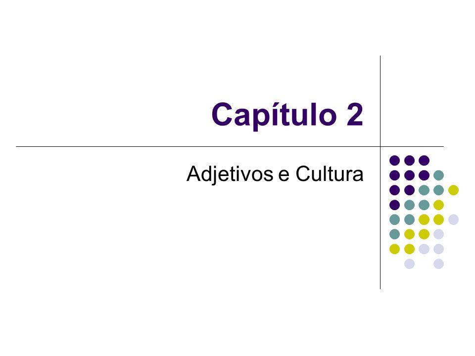 Capítulo 2 Adjetivos e Cultura