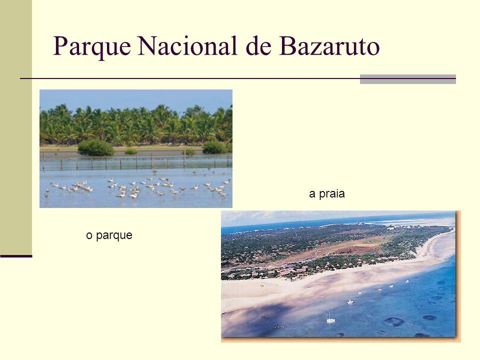 Parque Nacional de Bazaruto o parque a praia