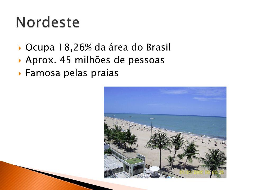 Ocupa 18,26% da área do Brasil Aprox. 45 milhões de pessoas Famosa pelas praias