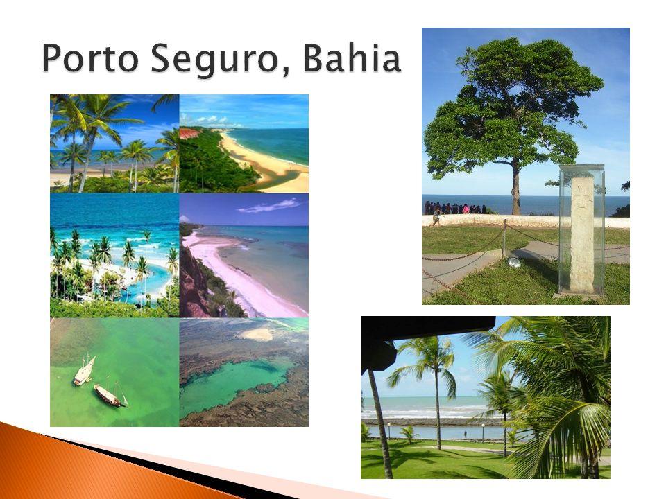 O Nordeste tem uma cultura muito rica, com as construções singulares dos centros históricos de Salvador, Recife e Olinda, danças (frevo e maracatu), música (axé and forró) e culinária única.frevo maracatuforró