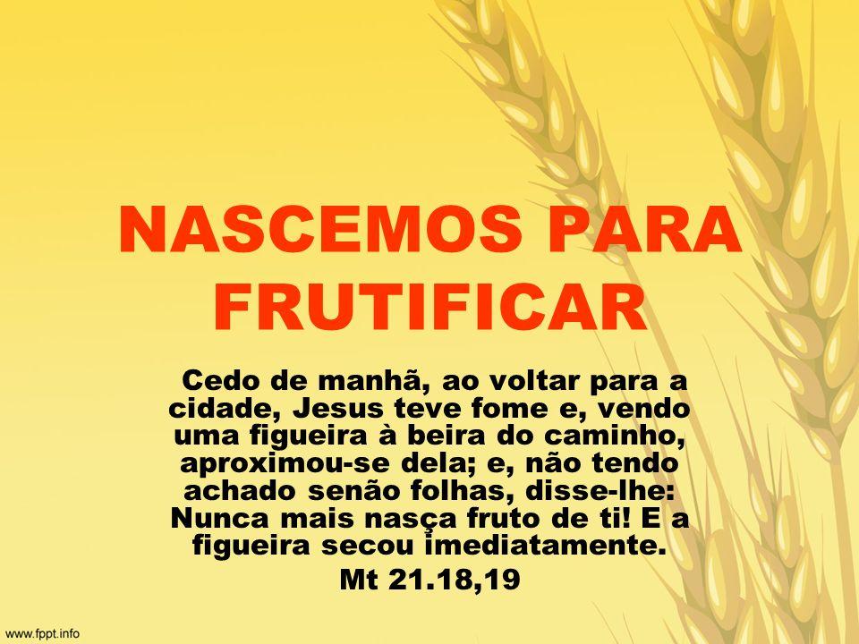 NASCEMOS PARA FRUTIFICAR Cedo de manhã, ao voltar para a cidade, Jesus teve fome e, vendo uma figueira à beira do caminho, aproximou-se dela; e, não t