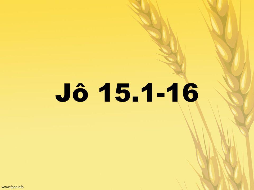 Jô 15.1-16