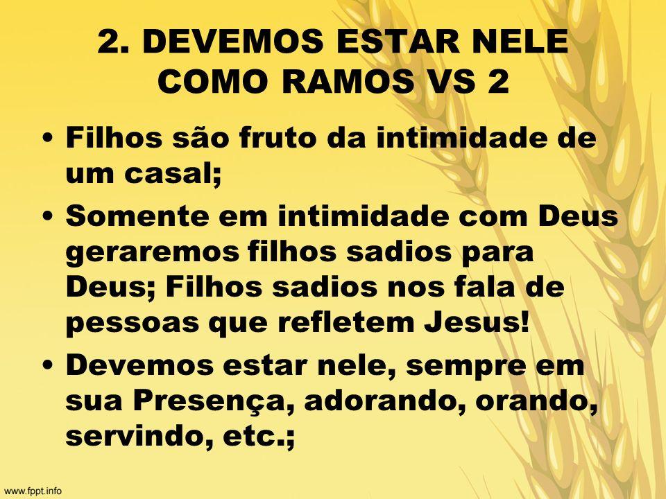 2. DEVEMOS ESTAR NELE COMO RAMOS VS 2 Filhos são fruto da intimidade de um casal; Somente em intimidade com Deus geraremos filhos sadios para Deus; Fi