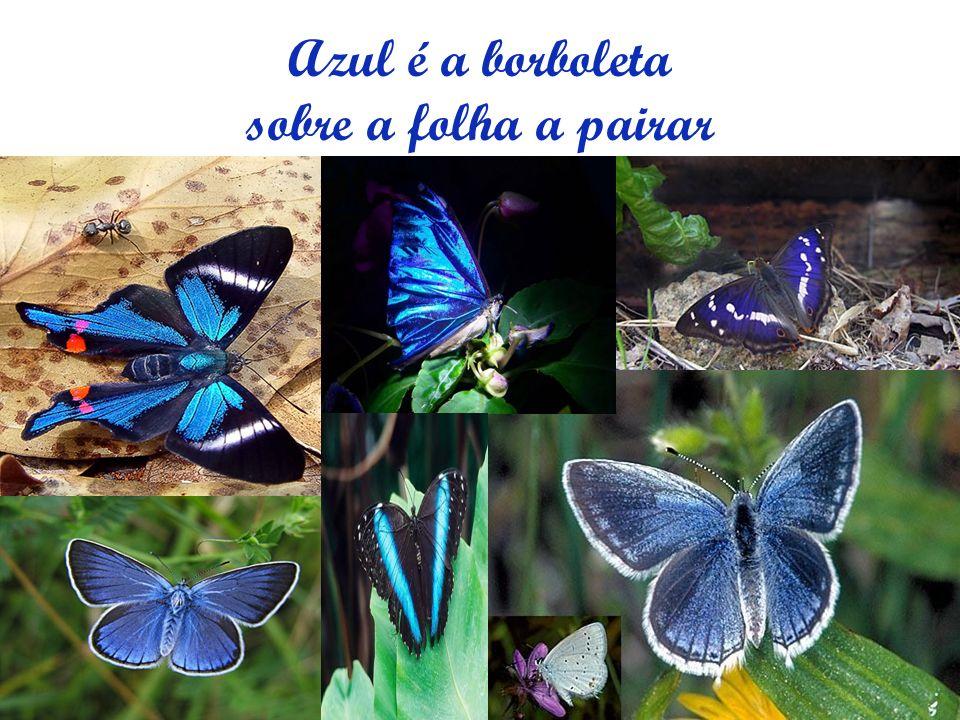 Azul é a borboleta sobre a folha a pairar