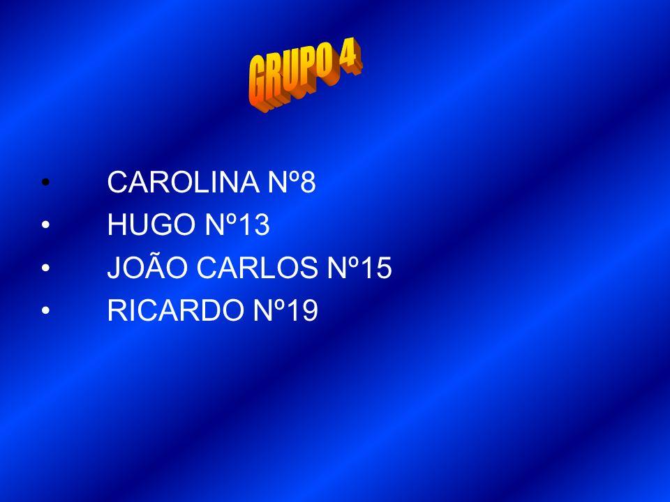 CAROLINA Nº8 HUGO Nº13 JOÃO CARLOS Nº15 RICARDO Nº19