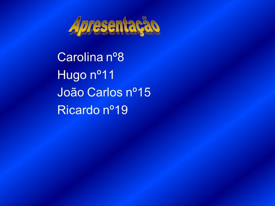 Carolina nº8 Hugo nº11 João Carlos nº15 Ricardo nº19