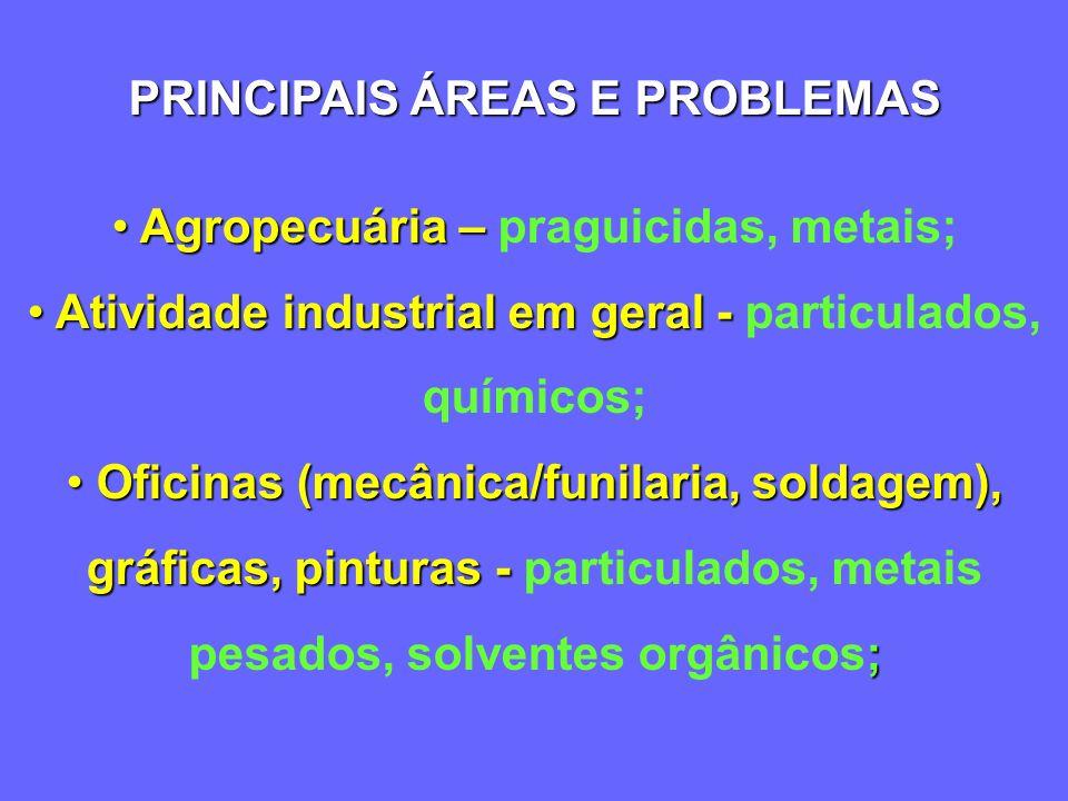 NO AMBIENTE DE TRABALHO RISCO = ACIDENTES? IMPERÍCIA? OU IMPERÍCIA + ACIDENTES