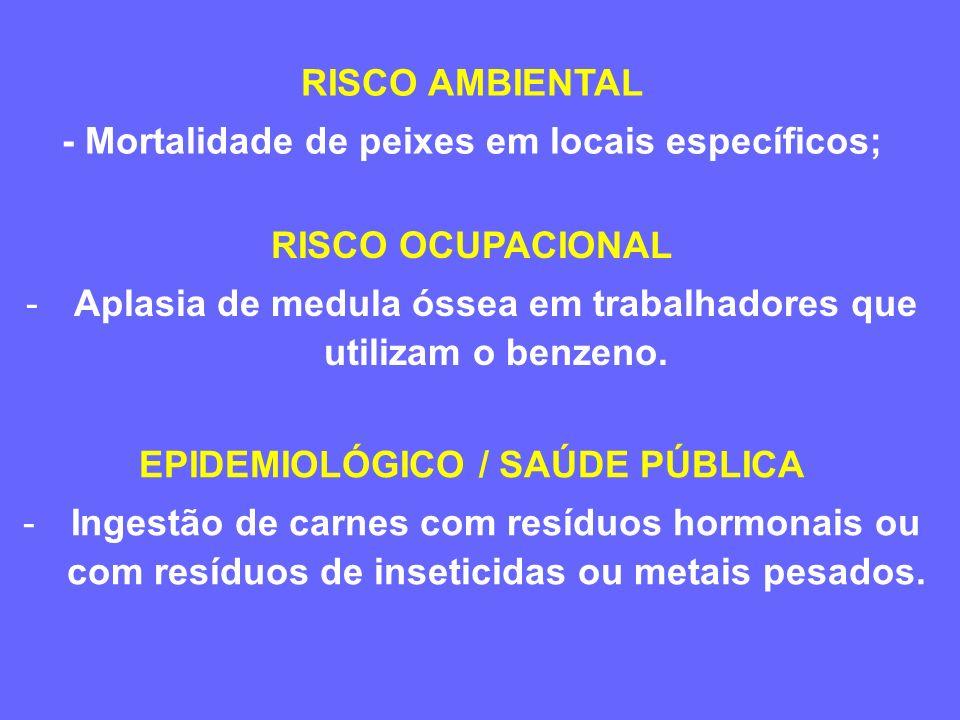 EXEMPLOS DE SITUAÇÕES PARA AVALIAÇÃO DE RISCO