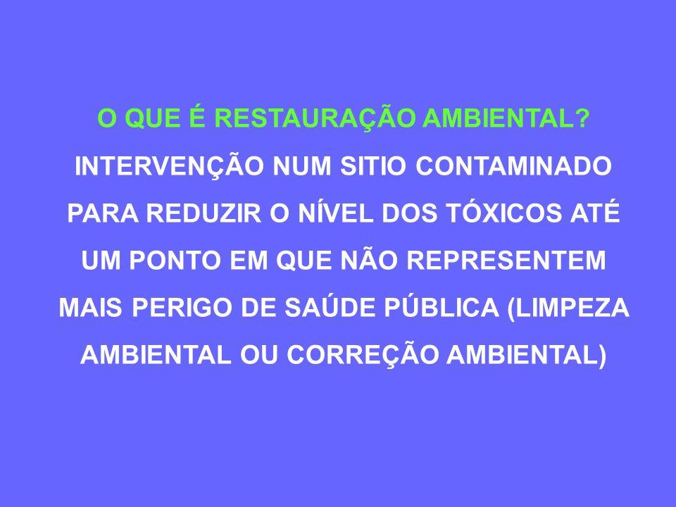 RESTAURAÇÃO AMBIENTAL