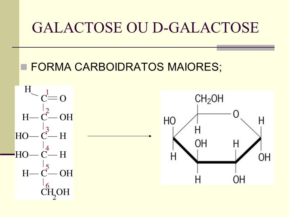 GALACTOSE OU D-GALACTOSE FORMA CARBOIDRATOS MAIORES;
