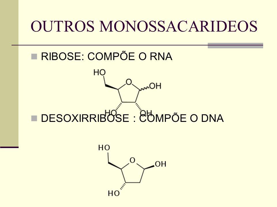 OUTROS MONOSSACARIDEOS RIBOSE: COMPÕE O RNA DESOXIRRIBOSE : COMPÕE O DNA