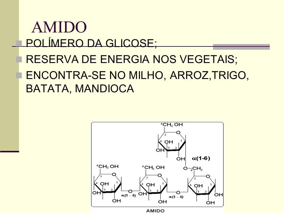 AMIDO POLÍMERO DA GLICOSE; RESERVA DE ENERGIA NOS VEGETAIS; ENCONTRA-SE NO MILHO, ARROZ,TRIGO, BATATA, MANDIOCA