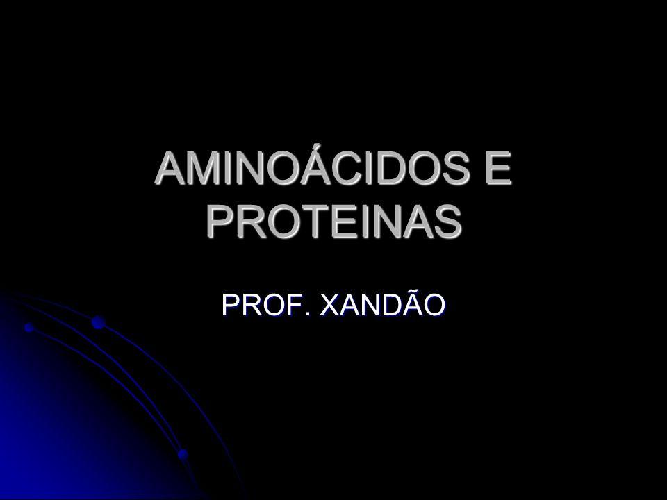 AMINOÁCIDOS E PROTEINAS PROF. XANDÃO