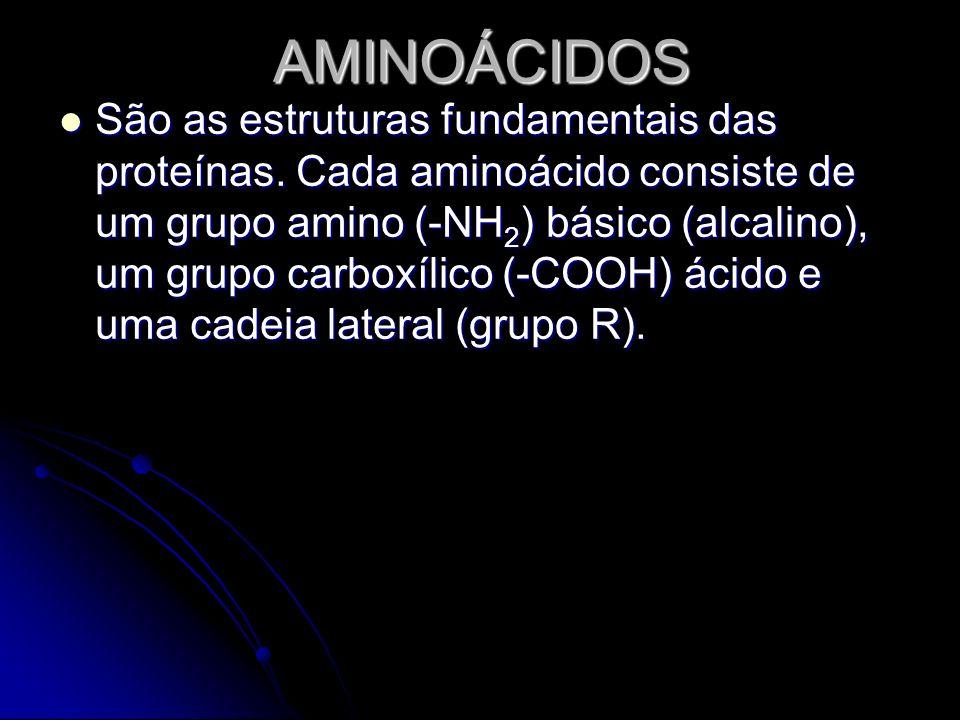AMINOÁCIDOS São as estruturas fundamentais das proteínas. Cada aminoácido consiste de um grupo amino (-NH 2 ) básico (alcalino), um grupo carboxílico