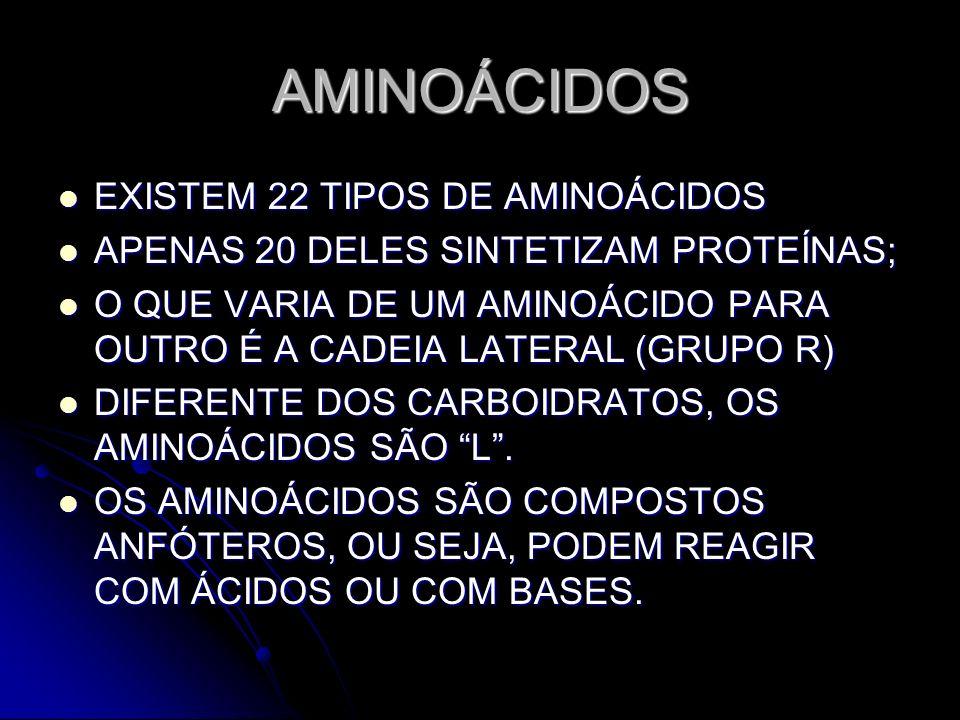 AMINOÁCIDOS EXISTEM 22 TIPOS DE AMINOÁCIDOS EXISTEM 22 TIPOS DE AMINOÁCIDOS APENAS 20 DELES SINTETIZAM PROTEÍNAS; APENAS 20 DELES SINTETIZAM PROTEÍNAS