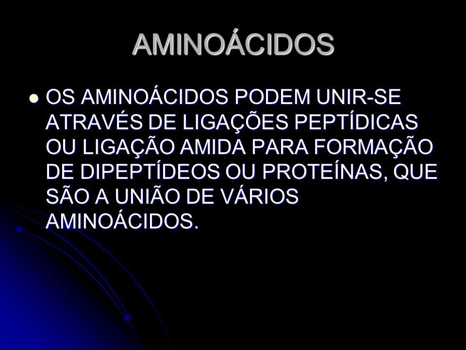 AMINOÁCIDOS OS AMINOÁCIDOS PODEM UNIR-SE ATRAVÉS DE LIGAÇÕES PEPTÍDICAS OU LIGAÇÃO AMIDA PARA FORMAÇÃO DE DIPEPTÍDEOS OU PROTEÍNAS, QUE SÃO A UNIÃO DE