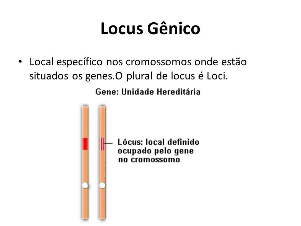 Locus Gênico Local específico nos cromossomos onde estão situados os genes.O plural de locus é Loci.