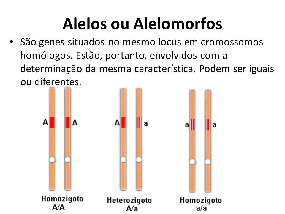 Alelos ou Alelomorfos São genes situados no mesmo locus em cromossomos homólogos. Estão, portanto, envolvidos com a determinação da mesma característi