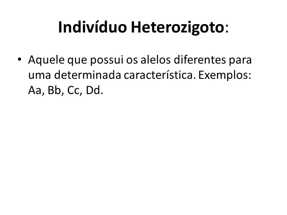 Indivíduo Heterozigoto: Aquele que possui os alelos diferentes para uma determinada característica. Exemplos: Aa, Bb, Cc, Dd.