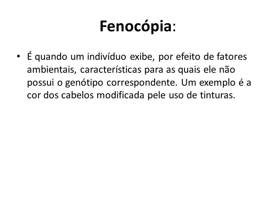 Fenocópia: É quando um indivíduo exibe, por efeito de fatores ambientais, características para as quais ele não possui o genótipo correspondente. Um e