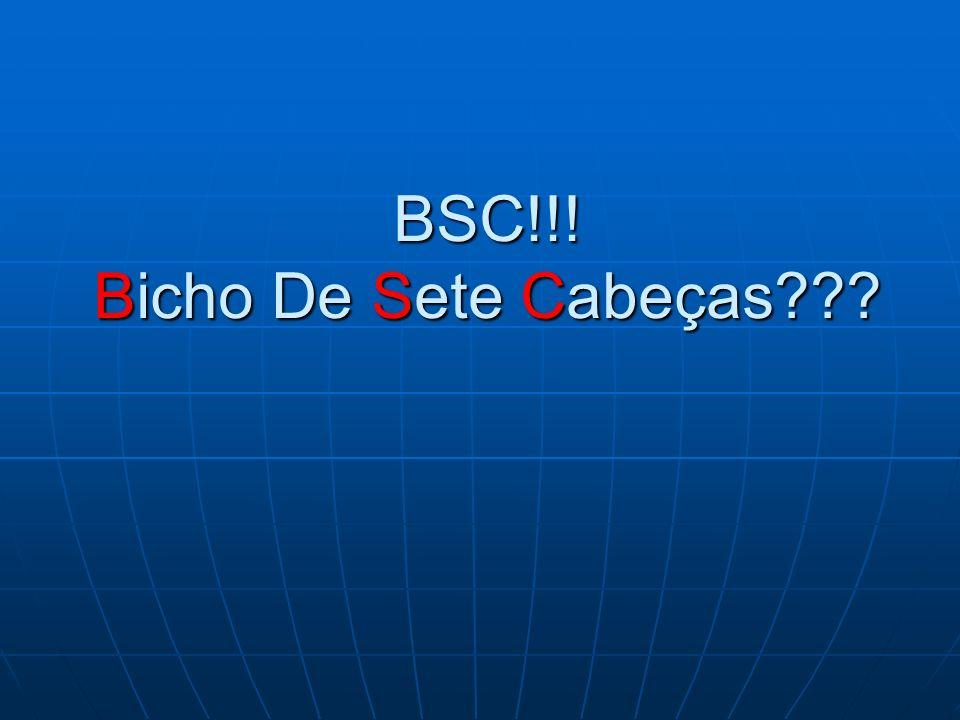 BSC!!! Bicho De Sete Cabeças???