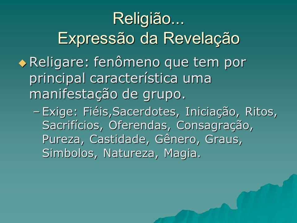 Religião... Expressão da Revelação Religare: fenômeno que tem por principal característica uma manifestação de grupo. Religare: fenômeno que tem por p