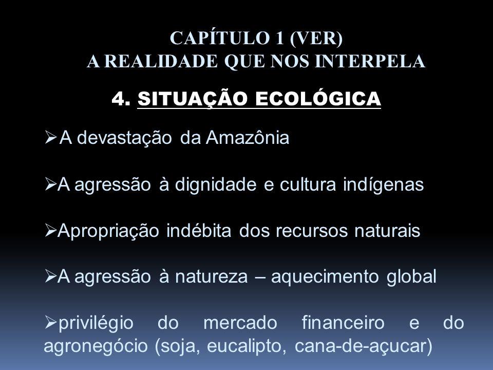 CAPÍTULO 1 (VER) A REALIDADE QUE NOS INTERPELA 4. SITUAÇÃO ECOLÓGICA A devastação da Amazônia A agressão à dignidade e cultura indígenas Apropriação i