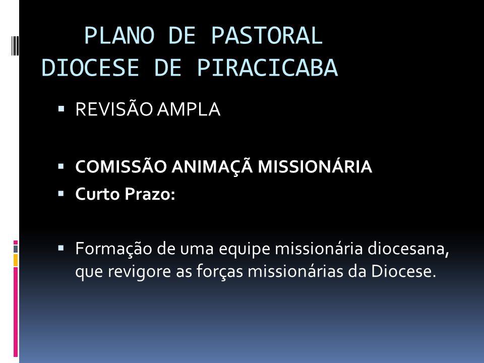 PLANO DE PASTORAL DIOCESE DE PIRACICABA REVISÃO AMPLA COMISSÃO ANIMAÇÃ MISSIONÁRIA Curto Prazo: Formação de uma equipe missionária diocesana, que revi