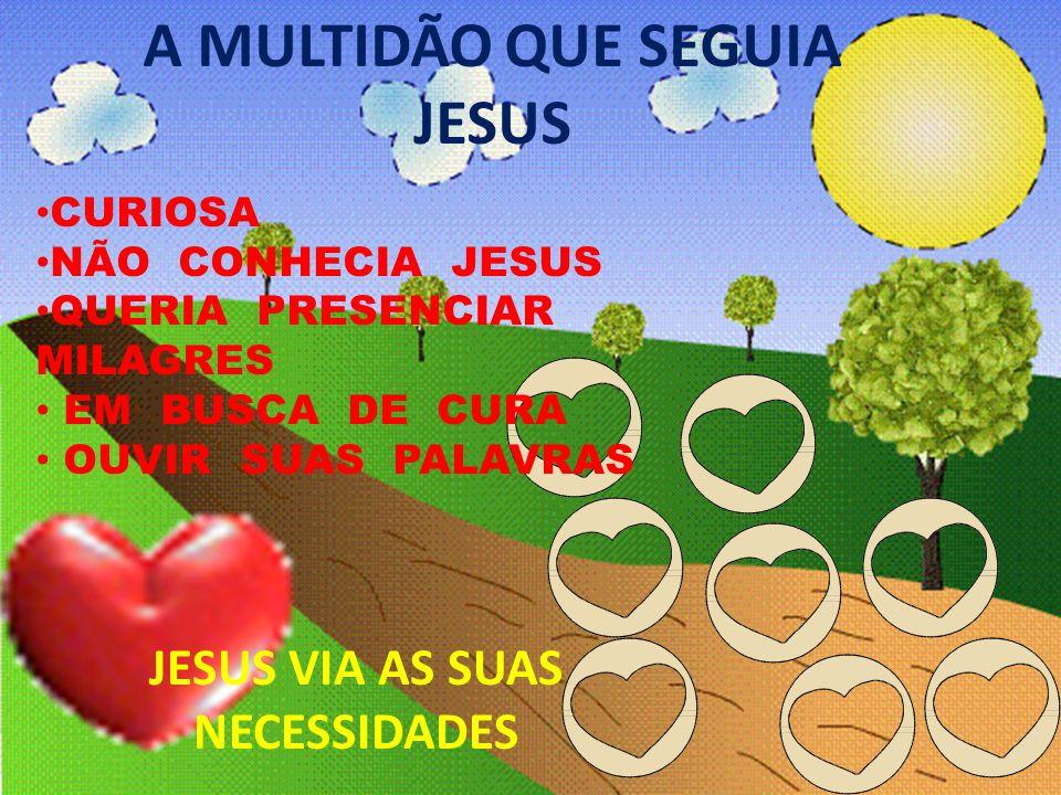 A MULTIDÃO QUE SEGUIA JESUS CURIOSA NÃO CONHECIA JESUS QUERIA PRESENCIAR MILAGRES EM BUSCA DE CURA OUVIR SUAS PALAVRAS JESUS VIA AS SUAS NECESSIDADES