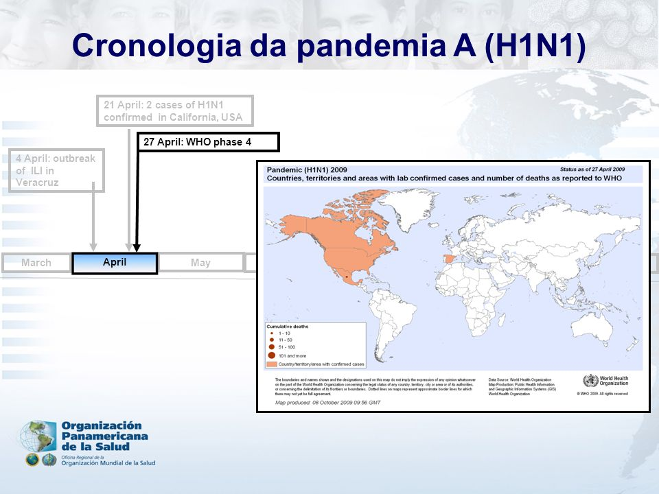 4 April: outbreak of ILI in Veracruz 27 April: WHO phase 4 May June July August October September March 21 April: 2 cases of H1N1 confirmed in California, USA April Cronologia da pandemia A (H1N1)