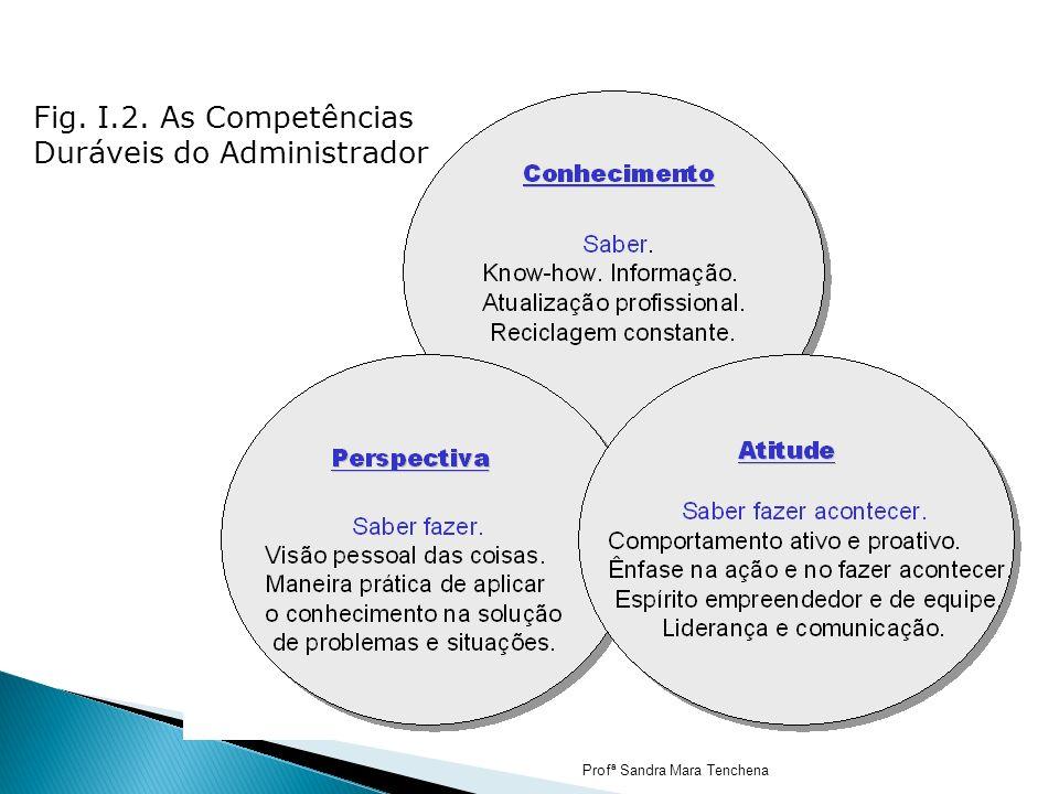 Fig. I.2. As Competências Duráveis do Administrador Profª Sandra Mara Tenchena