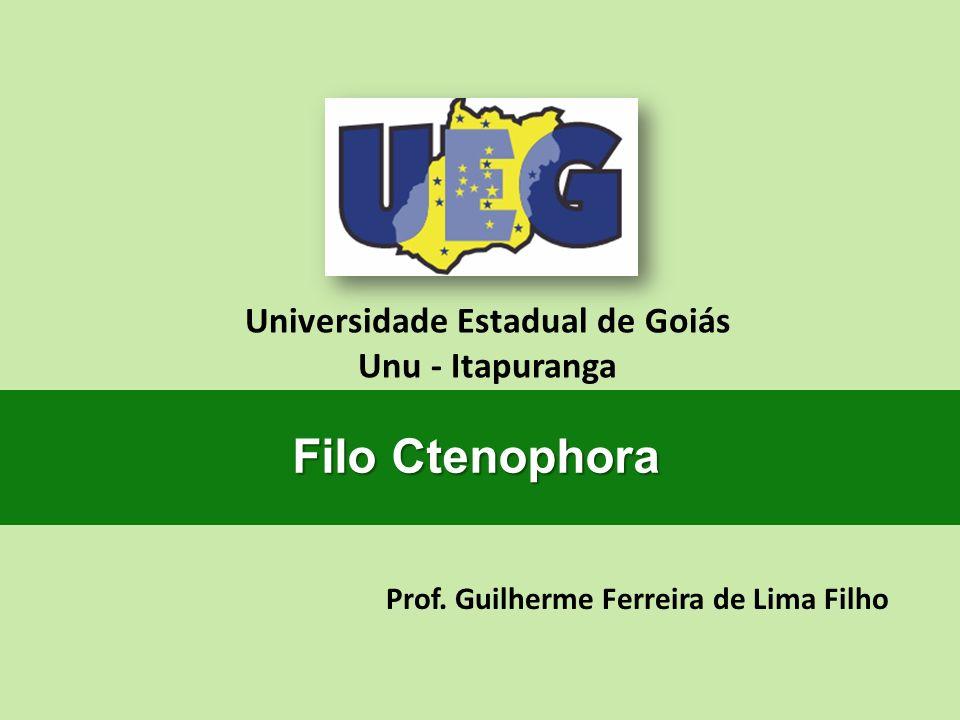 Prof. Guilherme Ferreira de Lima Filho Universidade Estadual de Goiás Unu - Itapuranga Filo Ctenophora