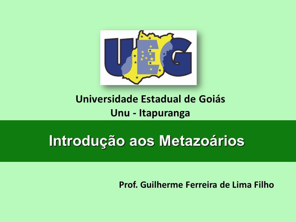 Prof. Guilherme Ferreira de Lima Filho Universidade Estadual de Goiás Unu - Itapuranga Introdução aos Metazoários