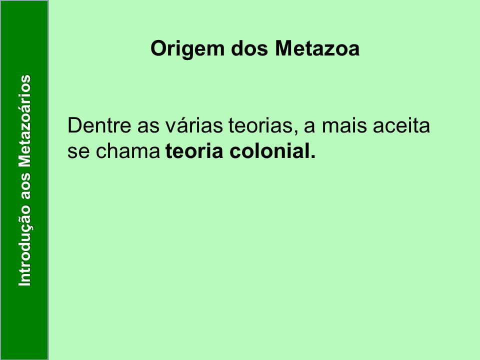 Origem dos Metazoa Dentre as várias teorias, a mais aceita se chama teoria colonial. Introdução aos Metazoários