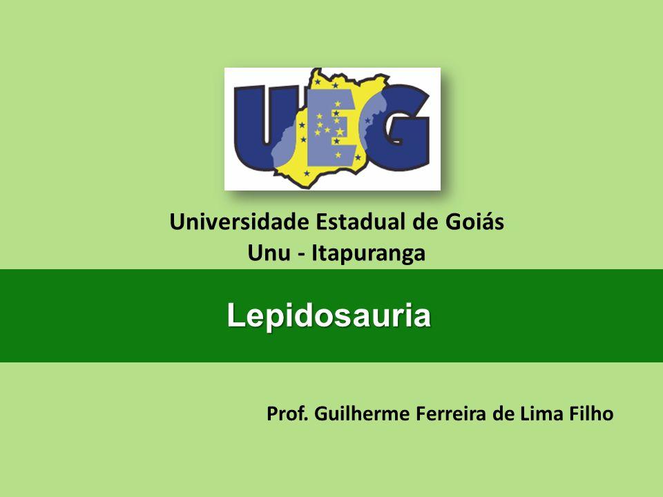 Prof. Guilherme Ferreira de Lima Filho Universidade Estadual de Goiás Unu - Itapuranga Lepidosauria