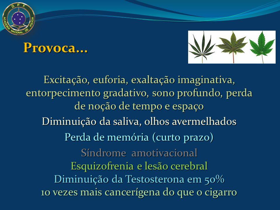 Maconha seca Dólar e cigarros de maconha Droga ilegal mais consumida no Brasil: