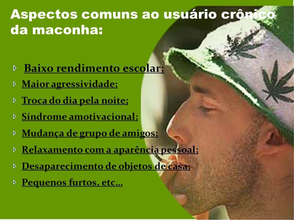 Sinais comuns no usuário de maconha quando sob o efeito desta droga: Tagarelice; Risos amotivados; Pupila dilatada; Conjuntivite; Boca seca; Fome exag