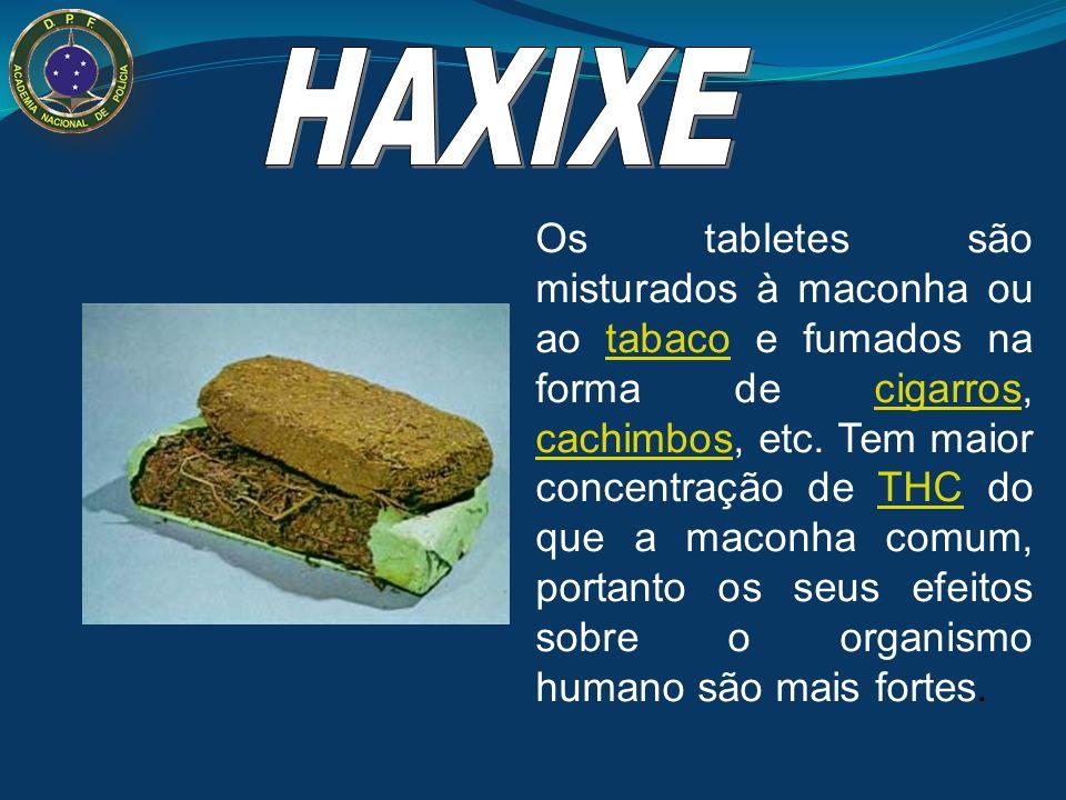 Haxixe (do hebraico Hashish) é uma resina extraída das folhas e das inflorescências femininas de Cannabis sativa (planta popularmente conhecida como m